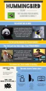 Infographie Hummingbird