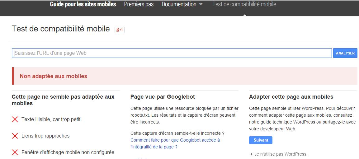 test de compatibilité mobile google