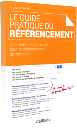 guide pratique du seo